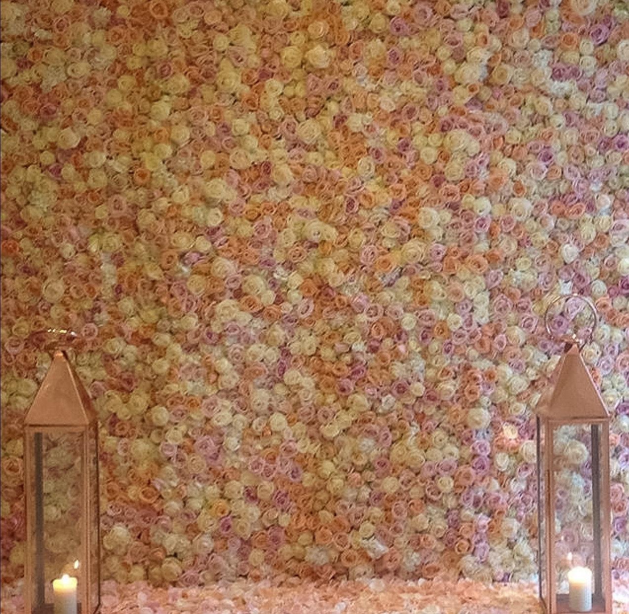 Marvelous Flower Wall Meijer Roses